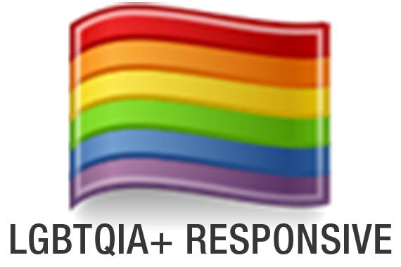 Provider is LGBTQIA+ Responsive