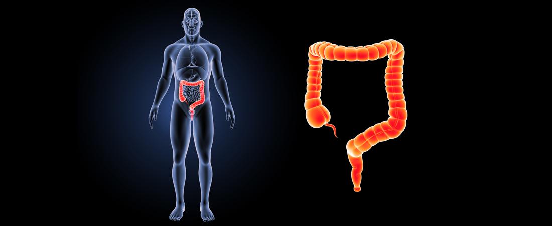 utmb gastroenterology